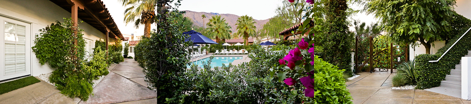 Alcazar Hotel Palm Springs 4