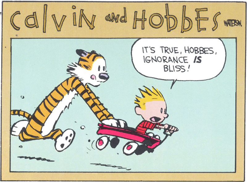 Ignorance is bliss from Calvin and Hobbes by Bill Watterson